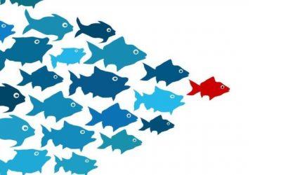4 incontournables pour inspirer votre Leadership (12k vues sur linkedin)